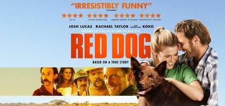 english movie review on red dog This is especially shown through the use of close-ups on red dogs eyes essay on english movie review on red dogmovie reviewed: red.