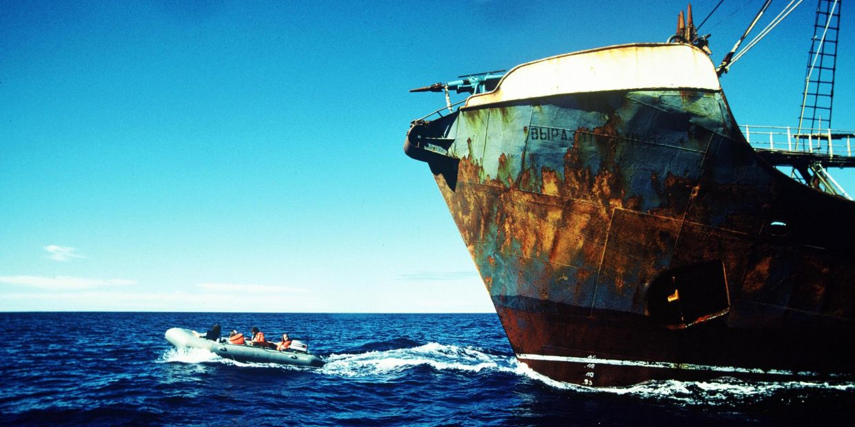 A Greenpeace Zodiac crew blockades a Russian harpoon ship during Greenpeace's second whale campaign. Mid North Pacific Ocean, between Mexico and Hawaii.