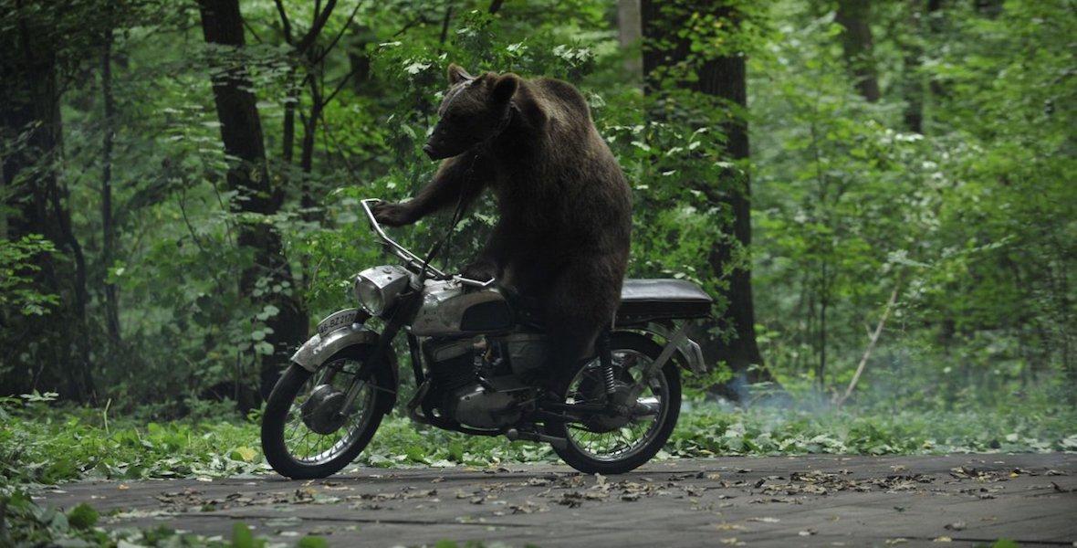 the-bear-2