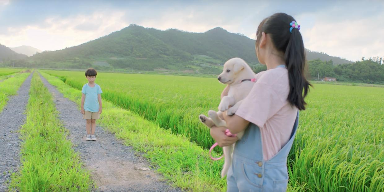 Kokdu: A Story of Guardian Angels (Kok-du yi-ya-ki) (2018)