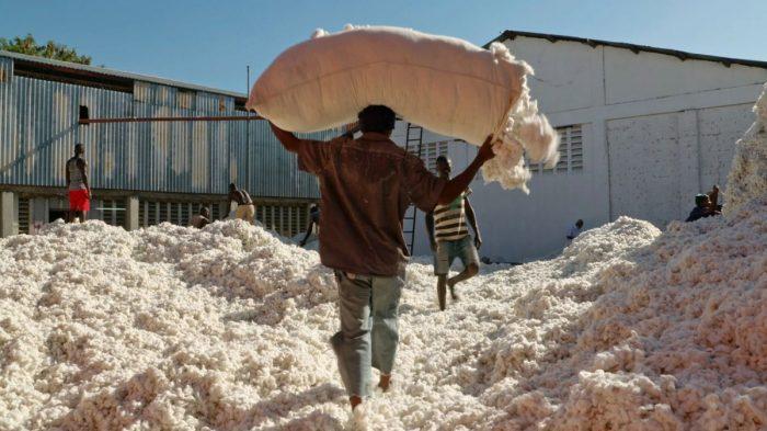Fair Traders (dir. Nino Jacusso, Switzerland)