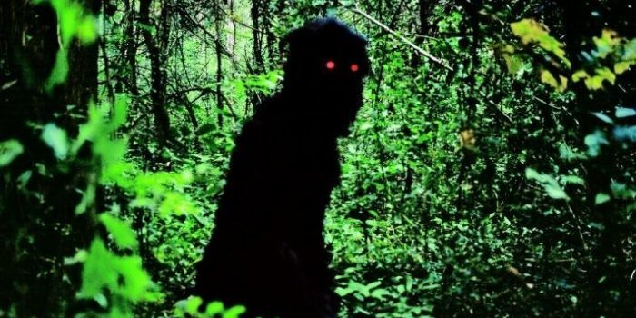 Uncle Boonmee Who Can Recall His Past Lives (dir. Apichatpong Weerasethakul, 2010)