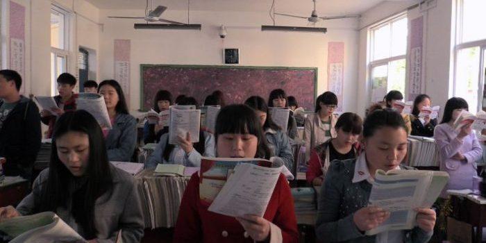 The Good Education (dir. Yu Gu, 2017)