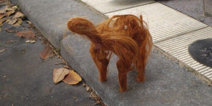 Haircut (dir. Gillian Wood, 2011)