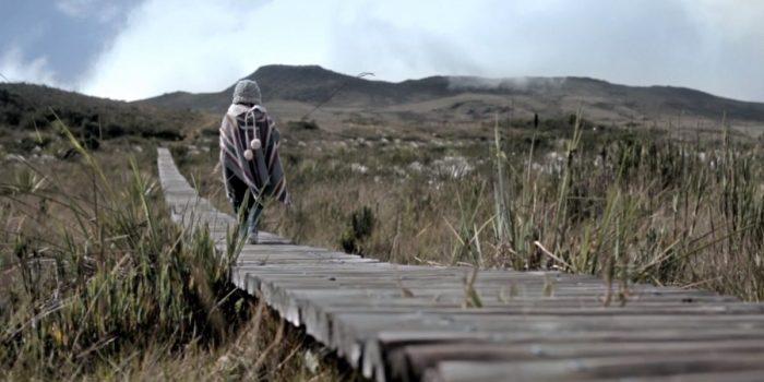 Water Path (dir. Carlos Felipe Montoya, 2015)